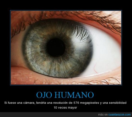 camara,humano,increible,ojo,smartphone