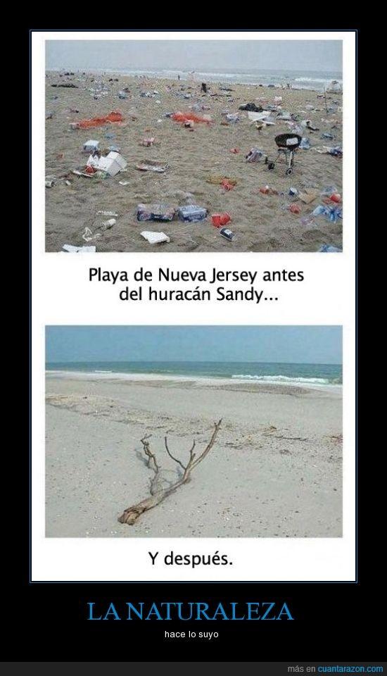 estados unidos,naturaleza,playa,sandy,se está cansando de la plaga humana