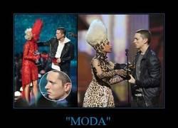 Enlace a MODA