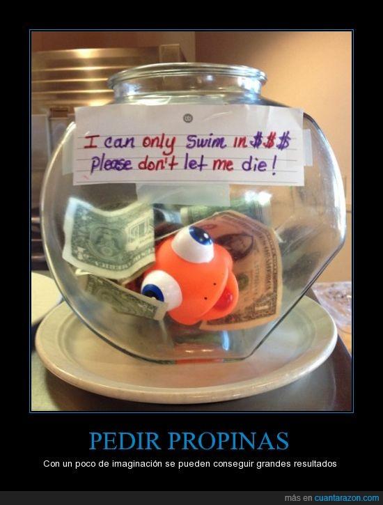 dinero,dolares,nadar,nemo,pecera,pez,propinas,soborno