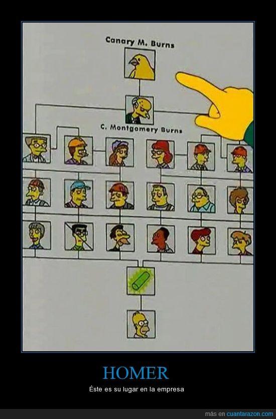 barra,Burns,Canario,Homer,Los simpson,organigrama
