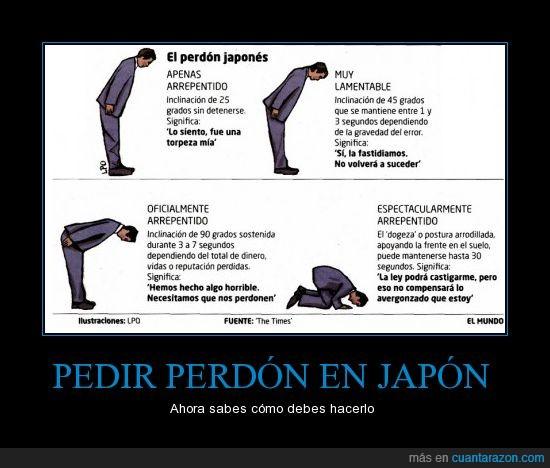 disculpa,frente,honor,japon,pedir,perdon,reverencia,rodilla