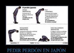 Enlace a PEDIR PERDÓN EN JAPÓN