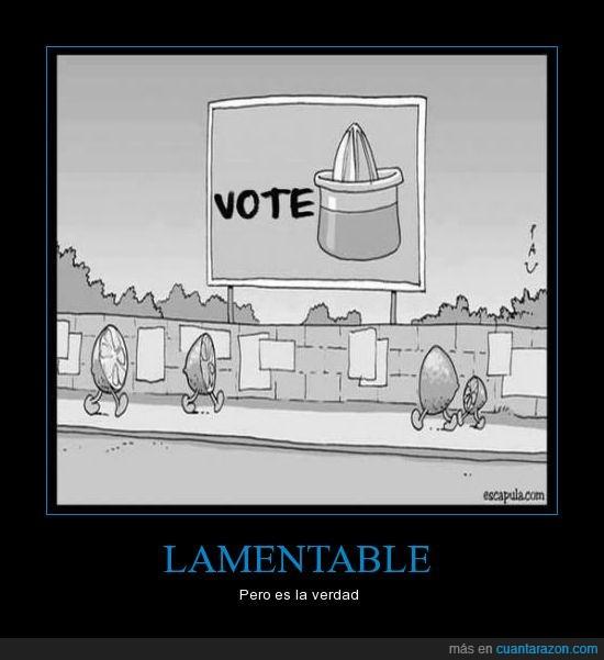 exprimir,naranja,politica,votar