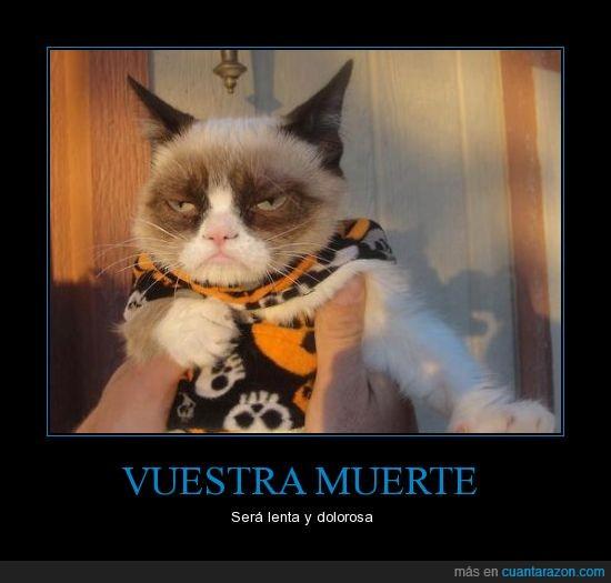 disfraz,gato,grumpy cat,halloween,venganza