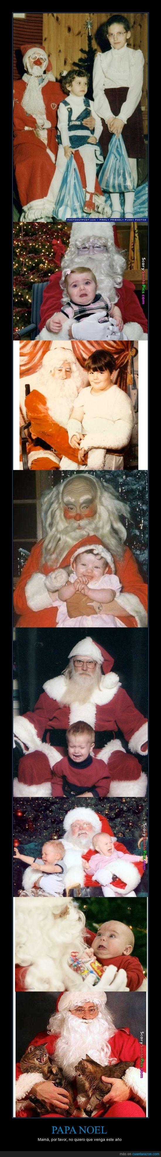 bizarro,falso,gato,llora,miedo,navidad,niño,papa noel,peluca,santa claus