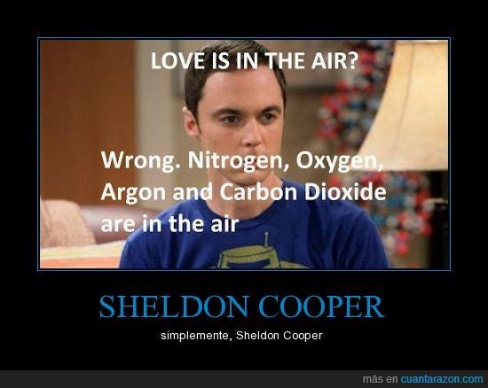 big bang theory,cartel,falso,frase,sheldon cooper,¿El amor está en el aire?