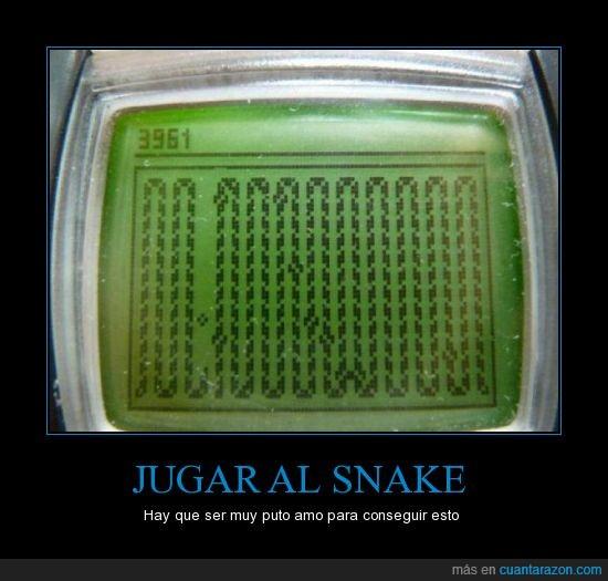 amo,like a boss,snake