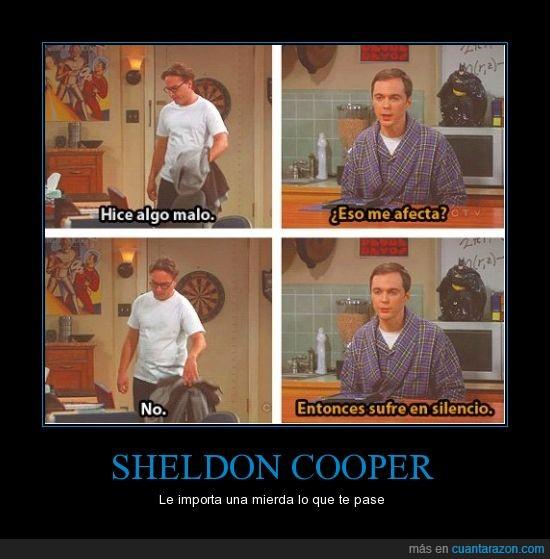 big bang theory,preocupación,problemas,sheldon cooper