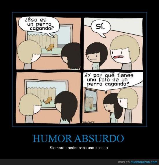 es tan malo que no paro de reírme,foto,humor absurdo,perro cagando,ventana