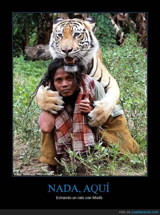 domador,fotografia,hombre,indonesia,mulan,salvaje,tener pelotas,tigre de bengala