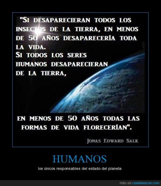 contaminacion,daño,desaparecer,humanos,insectos.,Jonas Edward Salk,tierra