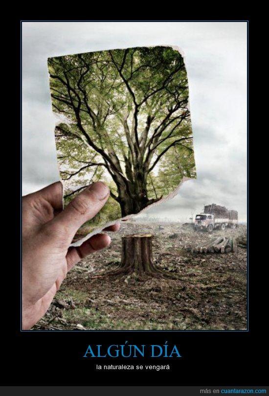 arbol,cambiar,deforestación,esto,hdp's,humanos,naturaleza,podemos,verde