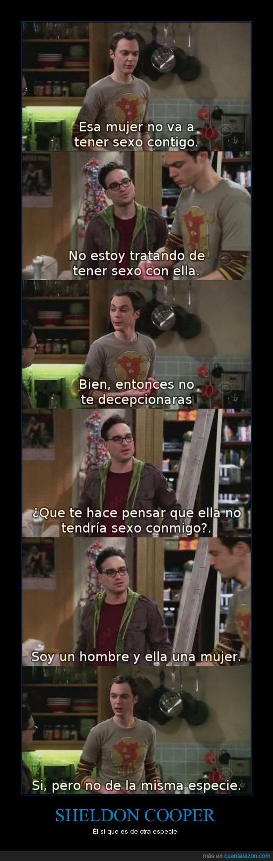 Big Bang theory,contigo,especie,mujer,Sheldon,tbbt