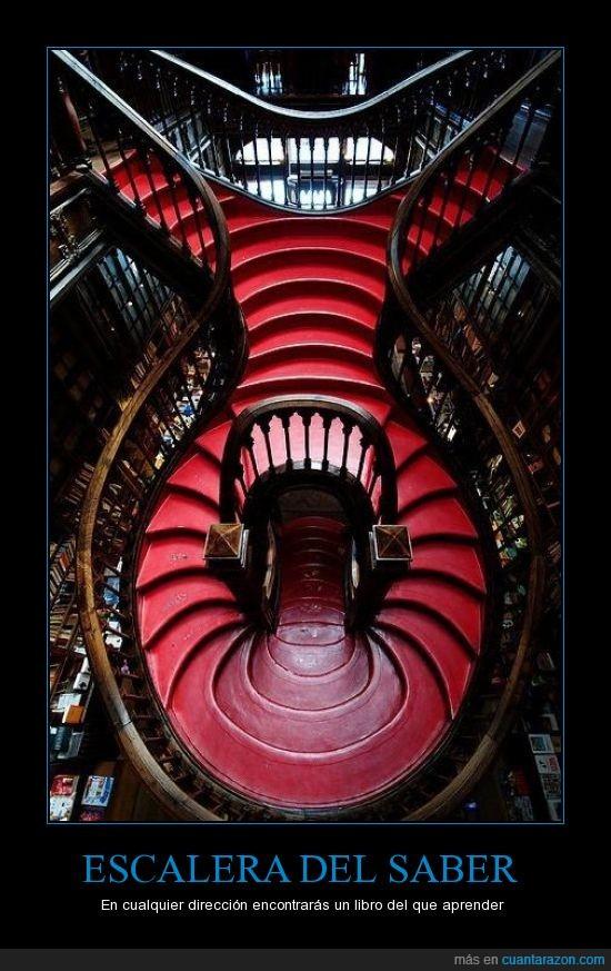 escalera,librería,libros,portugal,saber