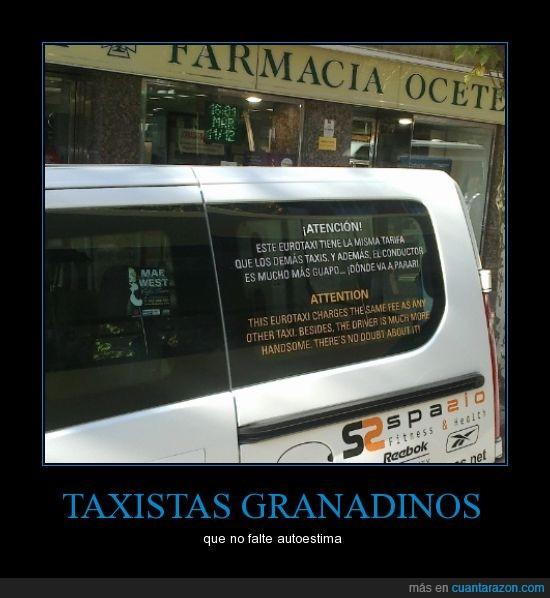 conductor,granada,guapo,taxi