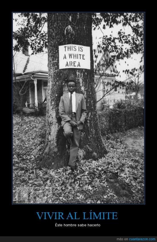arbol,blanco,cartel,humor,limite,negro,vivir,white zone