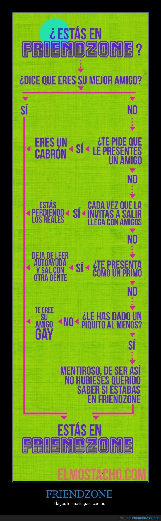 amigo,chart,Friendzone,grafica,infografico,novio,pagafantas