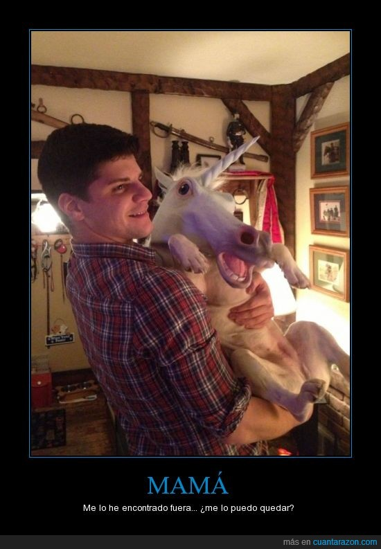 chico,mascara,perro,unicornio