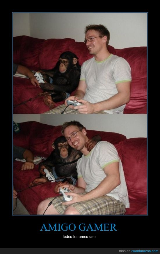 amigo,chimpance,gamer,jugar,play