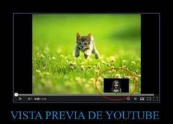 Enlace a VISTA PREVIA DE YOUTUBE