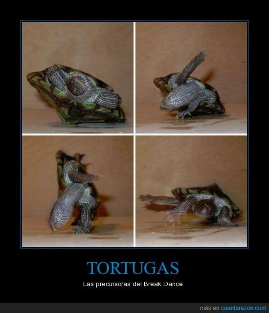 baile,break,dance,fundador,precursor,tortuga