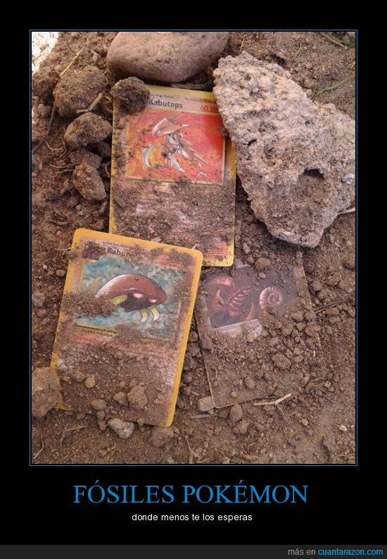 carta,enterrada,fósil,kabuto,kabutops,omaite,Pokémon,tarjeta,tierra
