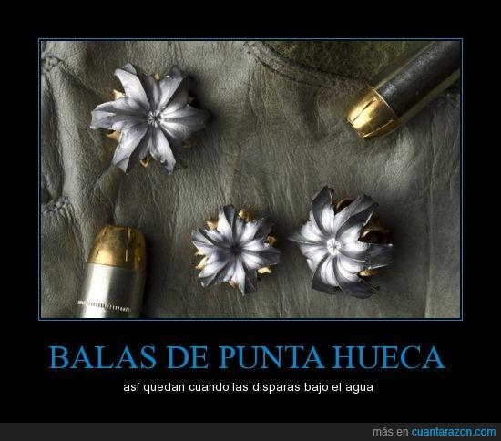 agua,arma,Bala,bonito,disparar,flor,punta hueca