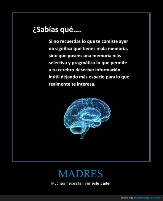 cerebro,interesa,inutil,madre,mala,memoria,olvida,pragmatica,selectiva