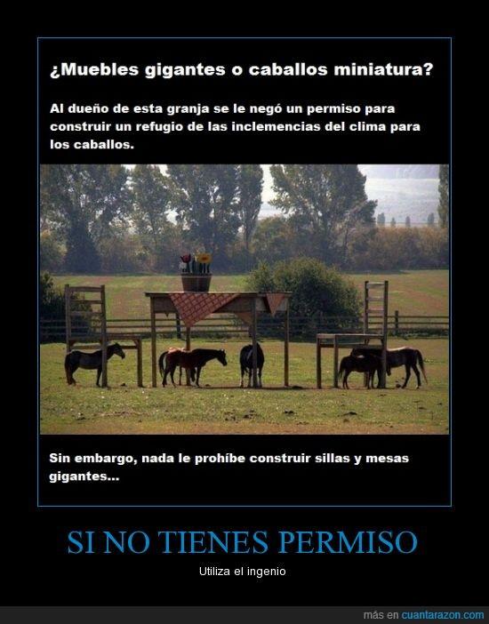 caballos,granja,Ingenio,miniatura,muebles,permiso