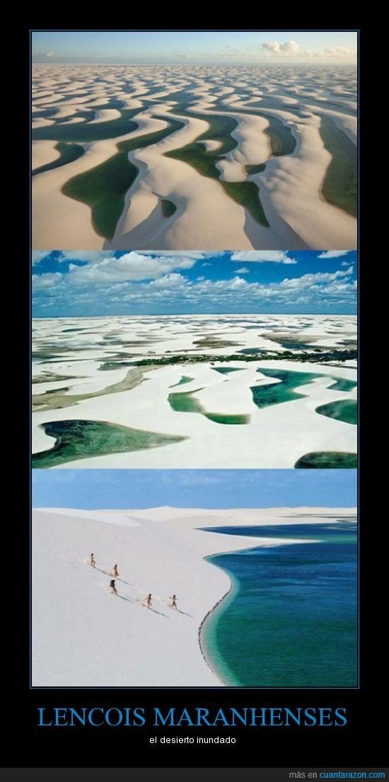 agua,desierto,inundado,lago
