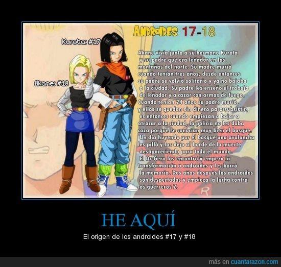 A17,A18,androides,dragon ball z,gero,historia,origen