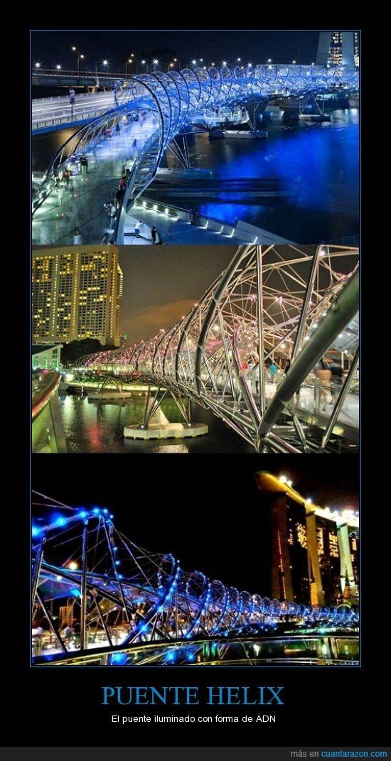 adn,cadena,color,helix,luz,noche,puente