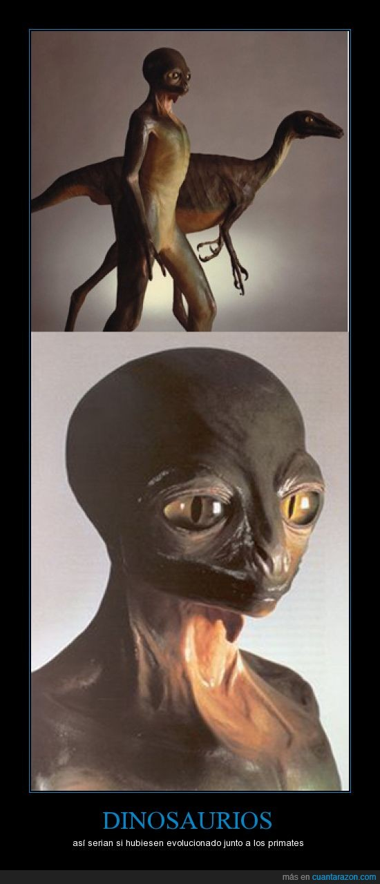 dinosaurio,evolución,primates,se parece a E.T