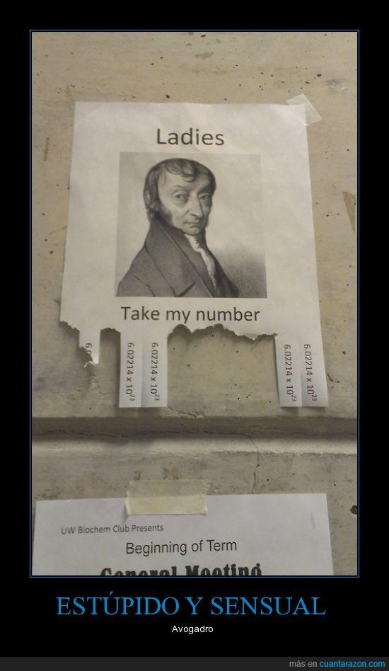 Avogadro,avogadrooooooo,estúpido y sensual,mole,numero