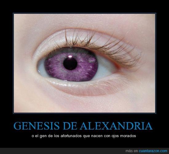 documentaros antes,es una teoría no me vengais ahora los genetistas,genética,lila,morado,morados,ojos,perfecto,piel,violeta