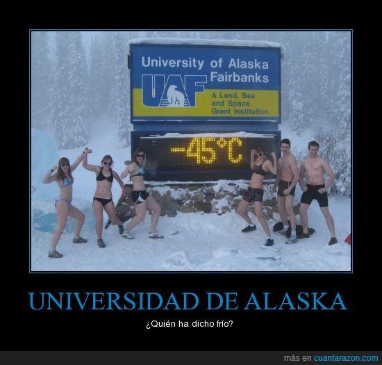 -45 grados,bajo cero,frío,nieve,ropa inerior,Universidad de Alaska