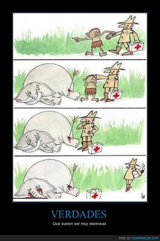 acabar con la fauna,africa,curar,doctor,elefante,marfil,medico,turista,verdades