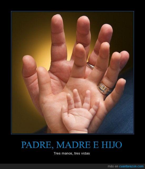 hijo,Madre,manos,padre,vidas