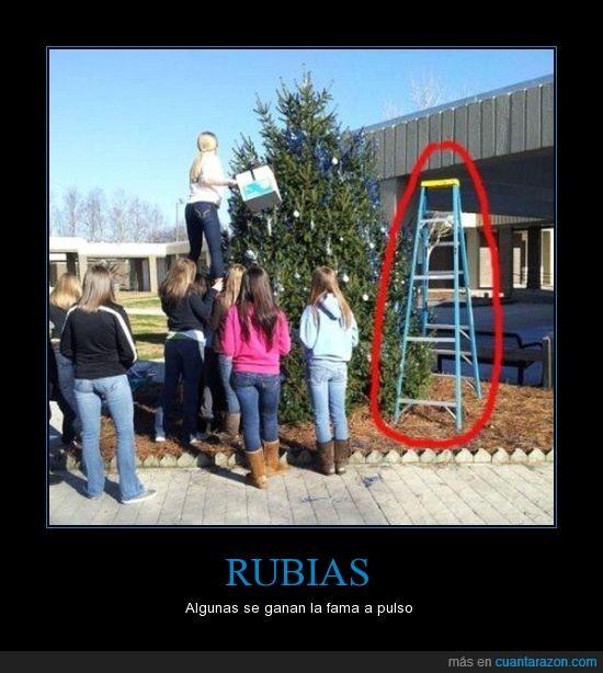 árbol de navidad,encima,escalera,rubias,seran cheerleaders,tontas