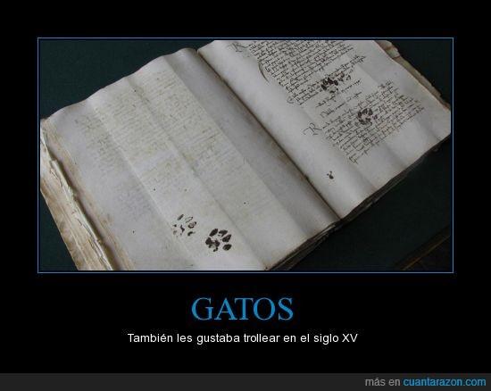 15,gatos,huellas,libro,mancha,siglo,tinta,troll,XV
