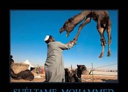 Enlace a SUÉLTAME, MOHAMMED