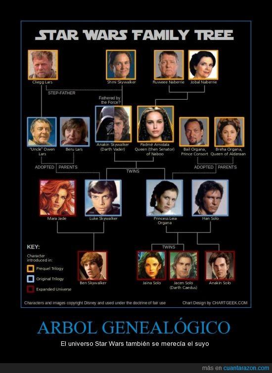 amidala,darth vader,familia,fuerza,han solo,leia,luke,star wars