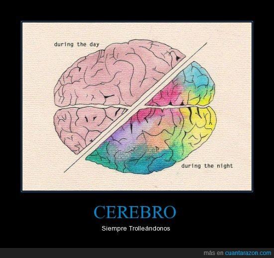 Cerebro,color,Imaginacion,noche,Troll