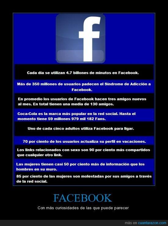 acosada,cara-libro,chat,curiosidades,facebook,likes,red social