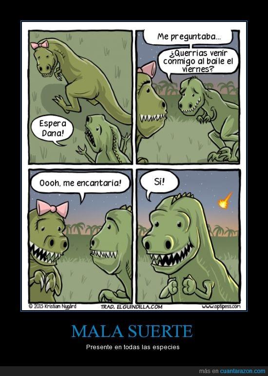 baile,dinosaurios,mala suerte,meteorito,salir