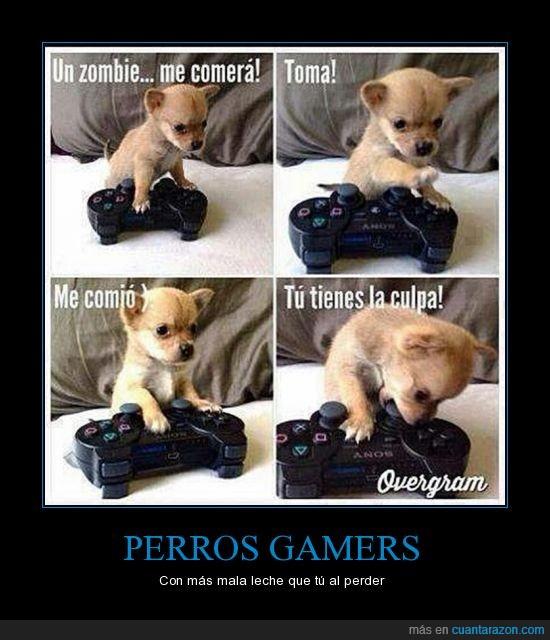 mando,matar,perrito,Perro,videojuego,zombie