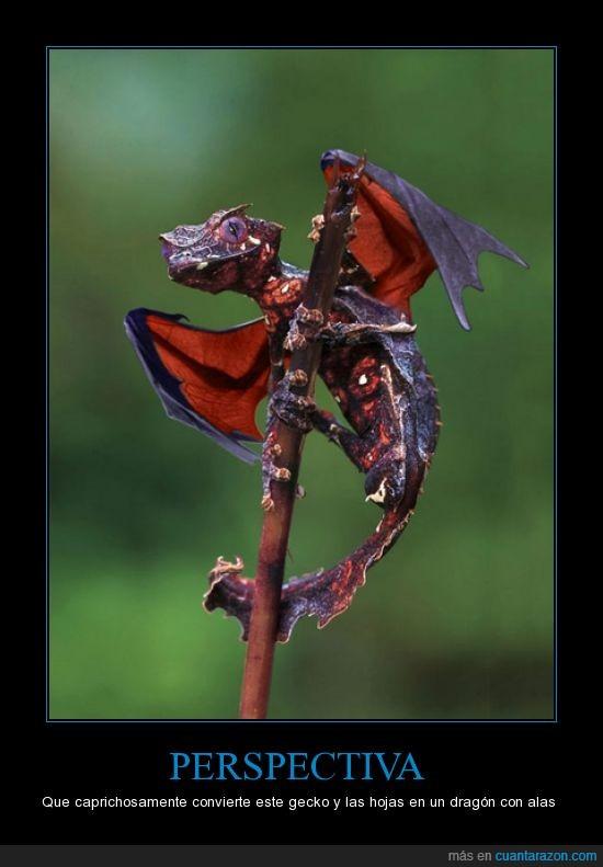 dragon,gecko,hojas,planta,satan