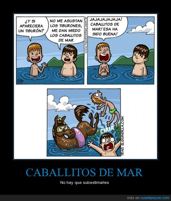 agua,caballitos de mar,coz,mar,niños,playa