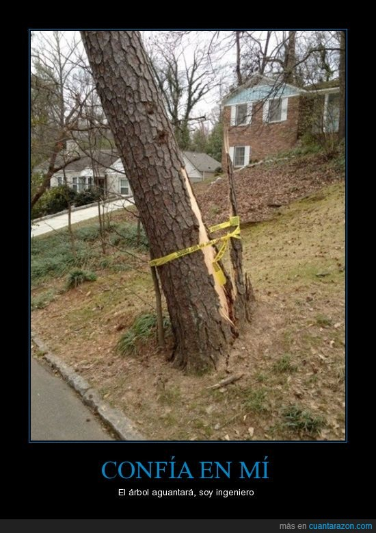 aguanta,arbol,cinta,cordon,ingeniero,romber,tronco